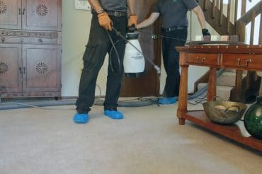 Helpro area rug cleaning Orlando